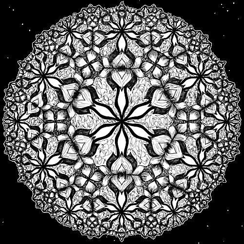 TML Lotus Petals